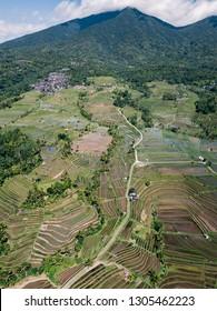 Jatiluwih rice terraces in Bali, Indonesia