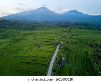 Jatiluwih Rice Terraces in the heart of Tabanan Regency is Bali's outstanding picturesque rice fields and represent the Subak system as Bali's Cultural Landscape.