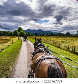 jaunting cars killarney national park ireland
