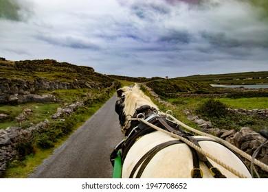 Jaunting Cart on Inishmore Ireland