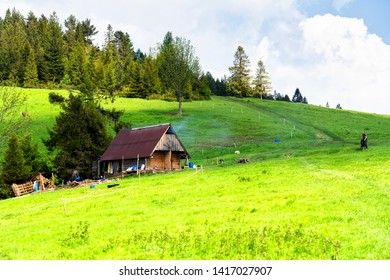 JAWORKI, POLAND - JUNE 2, 2019: Shepherds hut among mountains scenery. Panorama of grassland and forest in Pieniny mountains. Carpathian mountains landscape, Poland