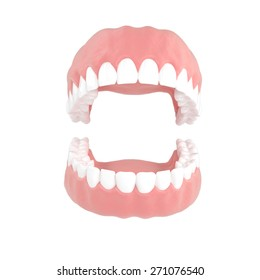 Jaws on a white background . 3d illustrations on a white background