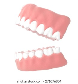 Jaws on a white background . 3d illustrations