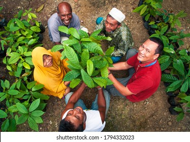 Jayapura, Indonesia - March, 2020. Working together. Cocoa farmer from various ethnic in Jayapura, Papua Province, Indonesia work as one community that protect the forest and livelihoods.
