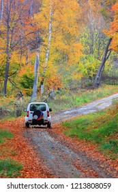 Jeep driving through scenic autumn forest