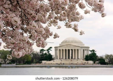 Jefferson Memorial during cherry blossoms festival