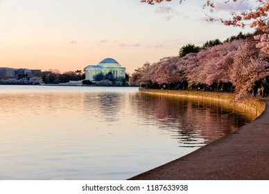 Jefferson Memorial at sunrise with cherry trees blossoming around Tidal Basin.