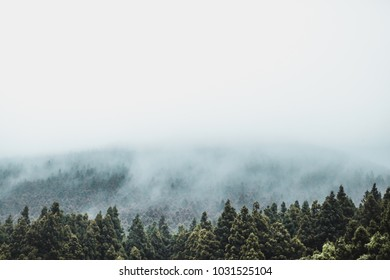 JEJU ISLAND, SOUTH KOREA - AUGUST 19, 2015: View on Hallasan mountain covered by thick fog at the Jeju Island - South Korea