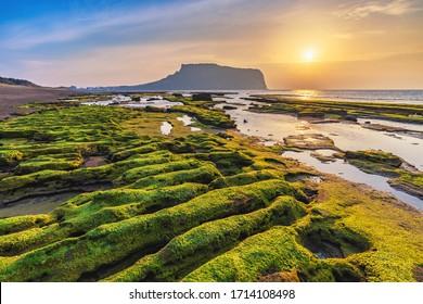 Jeju Island South Korea, Sunrise nature landscape at Jeju Do Seongsan Ilchulbong