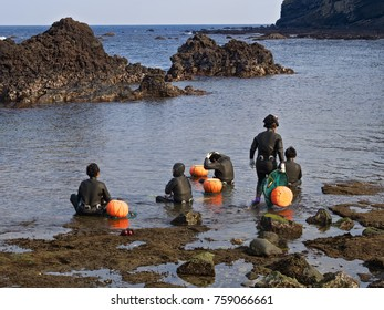 jeju, south korea - 3rd november 2017: haenyeo traditional female fishing divers of jeju island. they considered a national treasure. The majority of the divers are above 50 years old.