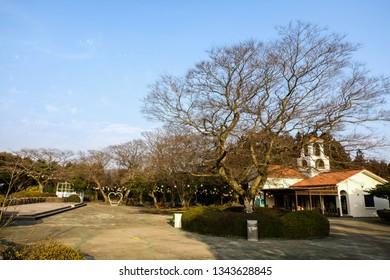 Jeju South Korea Feb 18 2019 Stock Photo Edit Now 1343628836