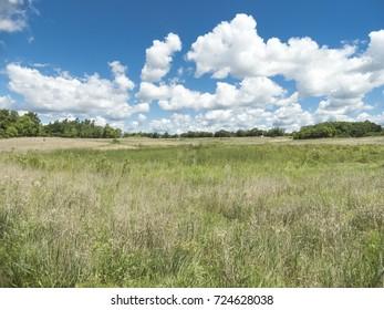 Jelke Creek Bird Sanctuary in Dundee Township Illinois