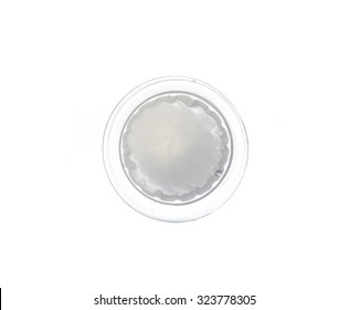 jelly pudding isolated on white background