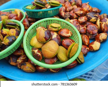 jering is food they eat in south east asia
