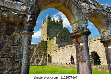 Jerpoint Abbey, a ruined Cistercian abbey, founded in the second half of the 12th century, located near Thomastown, County Kilkenny, Ireland.