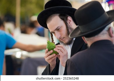 JERUSALEM, ISRAEL - 08 OCTOBER, 2014: An orthodox jewish man is checking a citron on a market in Jerusalem just before the sukkot holiday