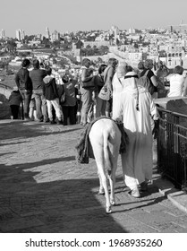 JERUSALEM, ISRAEL 26 10 2016: Arab man in national clothes and his donkey in mountain of olives. It's the most disputed holy ground between Muslims and Jewish people.