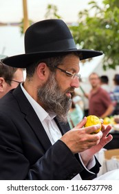 JERUSALEM, ISRAEL - OKTOBER 16, 2016: Traditional market before the holiday of Sukkot. Religious middle-aged Jew with gray beard is checking plant citrus - etrog