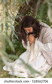 Jesus in agony praying in the garden of olives before his crucifixion