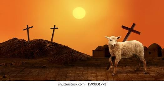 Jesus. Lamb of God. The atoning sacrifice of Jesus Christ