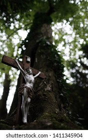 Jesus on the cross in nature