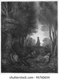 Jesus' praying in the Garden - Picture from The Holy Scriptures, Old and New Testaments books collection published in 1885, Stuttgart-Germany. Drawings by Gustave Dore.