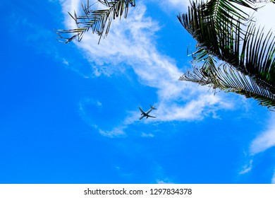 A jet plane arriving or departing from a tropical destination