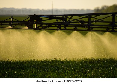 Jets of liquid fertilizer from the tractor sprayer. Tractor with the help of a sprayer sprays liquid fertilizers on young wheat in the field. The use of finely dispersed spray chemicals.