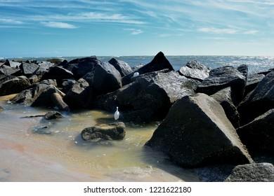 Jetty rocks at ocean beach inlet Florida, USA