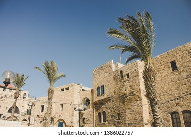 Jewish ancient city street Jaffa stone building and palm trees in bright summer windy weather time, touristic heritage and sightseeing landmark place