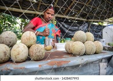 Jharkhali, West Bengal/ India - Dec 11 2017: Local Woman preparing spicy bael food for tourist,