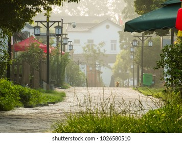 Jiangning District, Nanjing City, Jiangsu Province, Huanglong Daisy farmhouse rural landscape