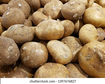 lot of jicama fruit in a market, background and texture