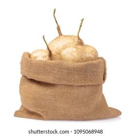 jicama sack isolated on white background