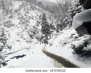 Jigokudani Taen-Koen, Nagano Prefecture/Japan - December 22, 2019: Winterly view at the Jigokudani in the Nagano Prefecture of Japan, snow monkey bathing onsen hotspring famous sightseeing in Japan.