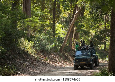 JIM CORBETT, INDIA-May 08: Tourists on a Safari jeeps waiting for the sighting of tiger in the dense forest of sal on May 08, 2018, Jim Corbett, Uttrakhand, India