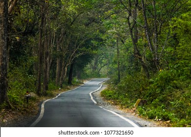 Jim Corbett landscape Jungle safari