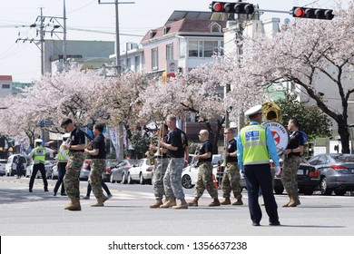 Jinhae, South Korea - April 2017 American Navy brass band playing and marching past cherry blossom trees during Jinhae Naval Festival Parade, wearing black top and camouflage bottom.