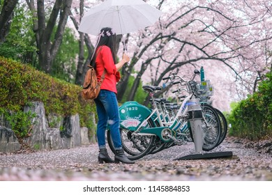 Jinhae - South Korea : Young pretty girl traveling in Jinhae cherry blossom festival at Jinhae city of South Korea on April 2018.