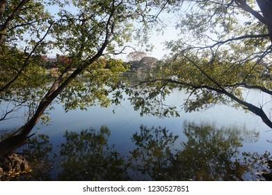 Jinhae water park