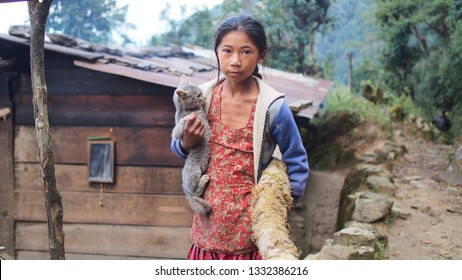 Jiri, Nepal - 10.31.2017: Young beautiful Nepali girl in traditional dress holding a cat and a wood log. Local people living in high mountain villages of Nepal.