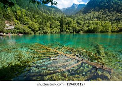 Jiuzhaigou, china, Jiuzhaigou National Park,valleys in China's Sichuan province, World Heritage site