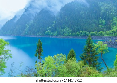 Jiuzhaigou lake and forest trees in  China, jiuzhaigou is a famous natural scenic spot in China.There are thick forests and vegetation.There are also distinctive lakes, mostly surrounded by mountain