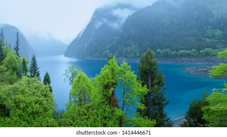 Jiuzhaigou lake and forest trees, located in sichuan province, China, jiuzhaigou is a famous natural scenic spot in China.There are thick forests and vegetation.There are also distinctive lakes