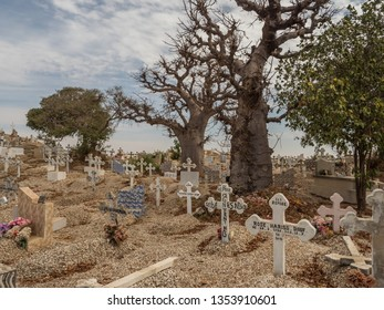 Joal-Fadiout, Senegal - January, 26, 2019: Hugee baobab trees on the cemetery. Joal-Fadiouth town and commune in the Thiès Region at the end of the Petite Côte of Senegal. Africa.