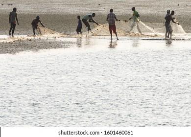 JOAL-FADIOUTH, SENEGAL - NOVEMBER15, 2019: Fishermans collecting shells. Hstoric Fadiauth Island. Senegal. West Africa.