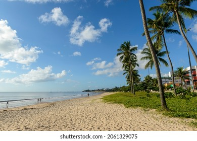 Joao Pessoa, Paraiba, Brazil on May 25, 2021. Manaira beach with coconut trees.