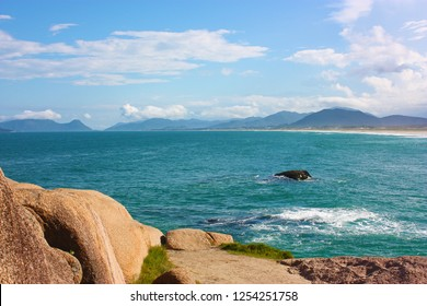 JOAQUINA BEACH, FLORIANOPOLIS, SANTA CATARINA, BRAZIL. View of the beach from over the hill. Stones in foreground.
