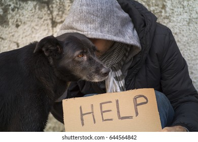 Jobless man nuzzling with his old faithful dog companion as he sits on a sidewalk begging for help in the street with a handwritten sign on hardboard hiding his face in a close up cropped view