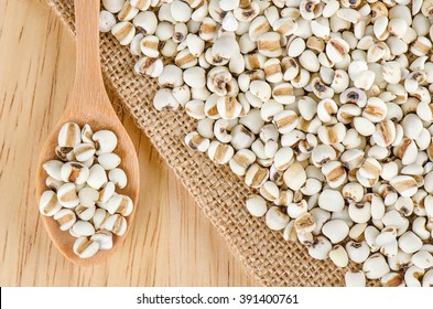 Job's tears with wooden spoon, Millet grains, Organic.